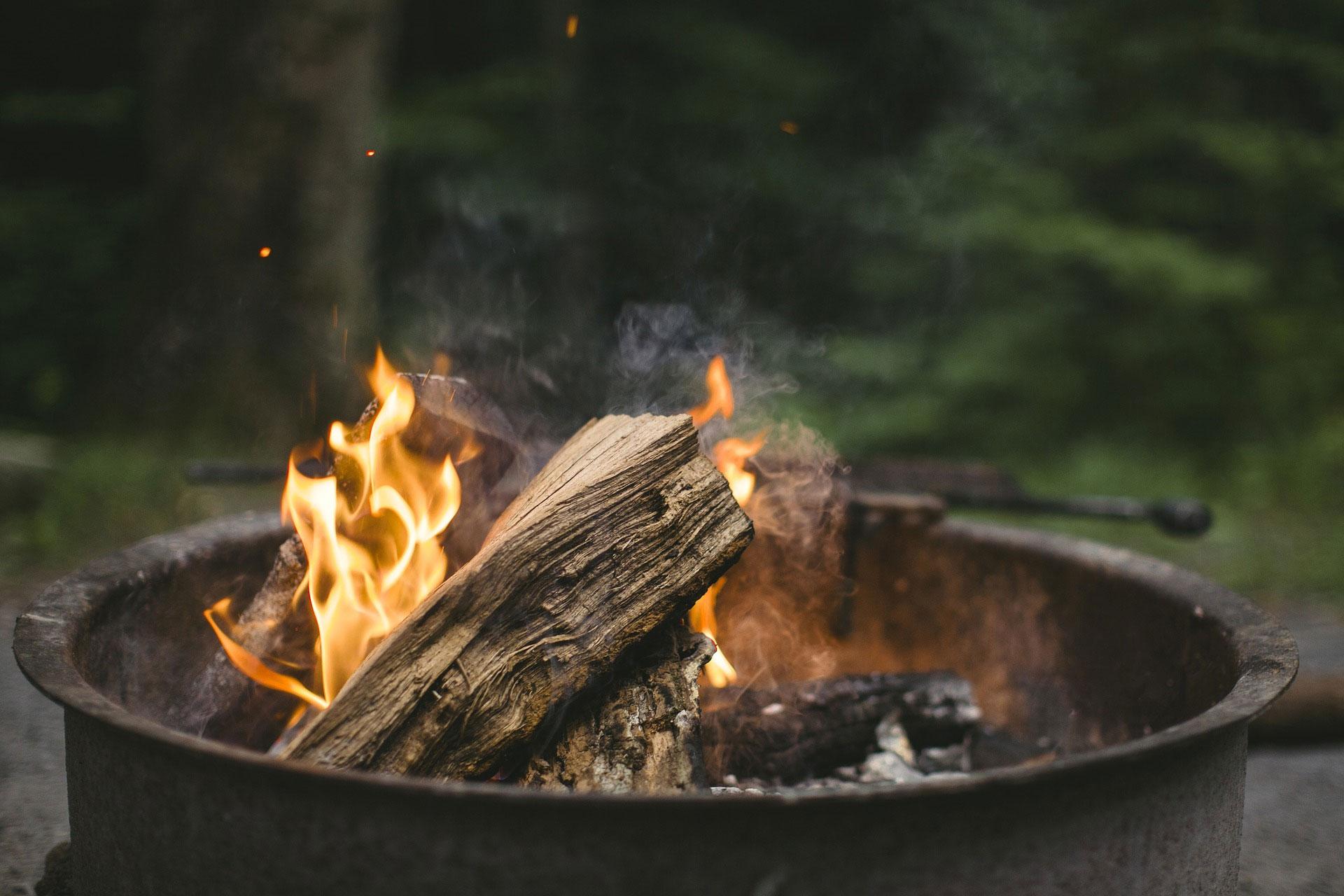 Seasoned or Kiln Dried logs