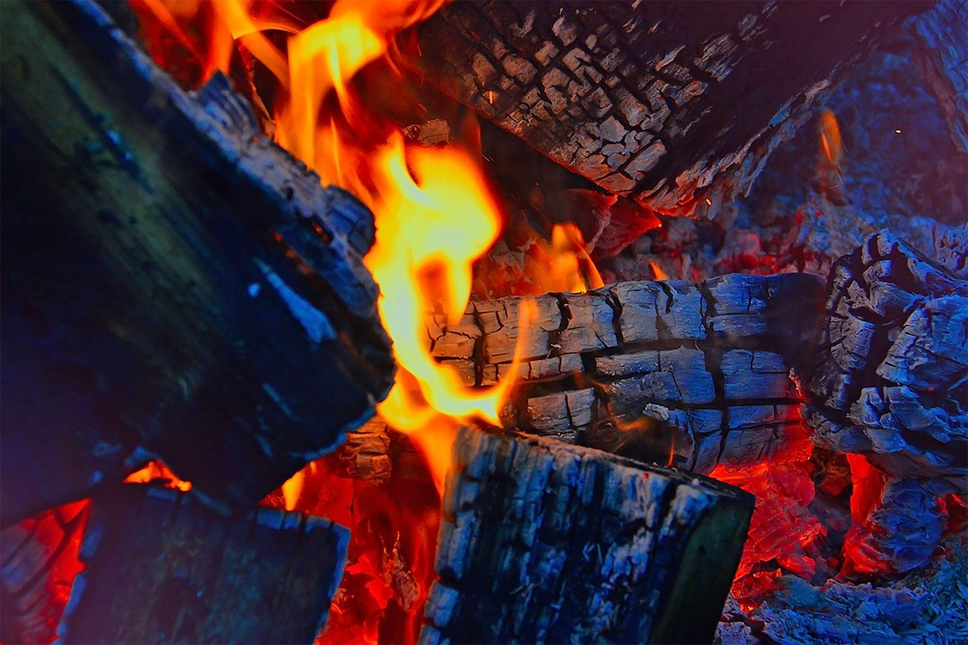 Firewood Devon